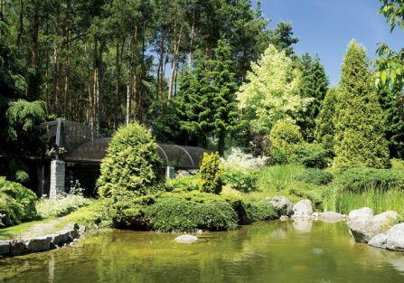 Ten ogród przyciaga jak magnes. Spotkamy tu żaby, leszcze, płocie, liny, jazie i klenie.