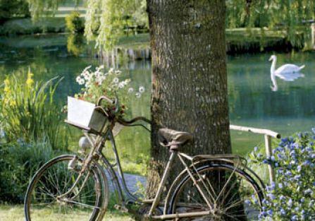 Wiosna to doskonały moment, aby wsiąść na rower. Fot. Stockfood/Free