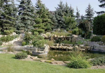 Wysokie drzewa odgradzają od sąsiadów i nadają ogrodowi intymny charakter.