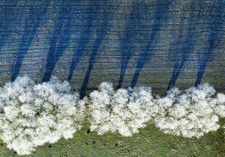 Z serii Zima . Zdjęcie: Kacper Kowalski