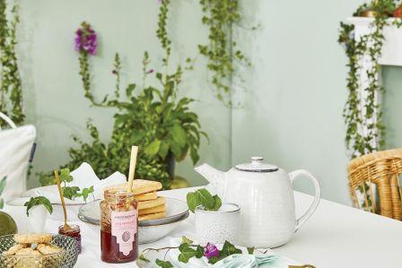 zaparzacze dzbanki i akcesoria do herbaty