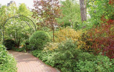 Porządki nie ominęły ogrodu. Usunięte zostały spróchniałe drzewa, posprzątane alejki i pojawiły się tysiące nowych