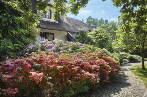 dom w stylu country ogród