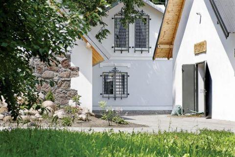 Dom we wsi Owczasnia. W ogrodzie sztuki