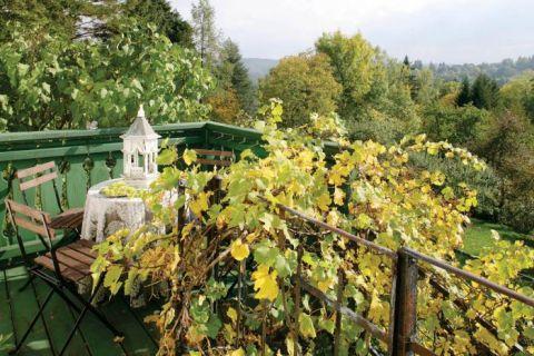 Winogrona zakradły się na taras. Zacisze wśród jabłoni