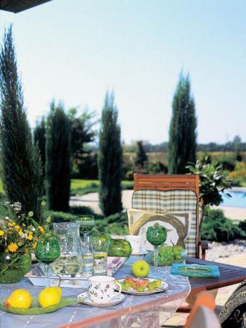 Świetne miejsce na śniadanie. Na zielonym dywanie