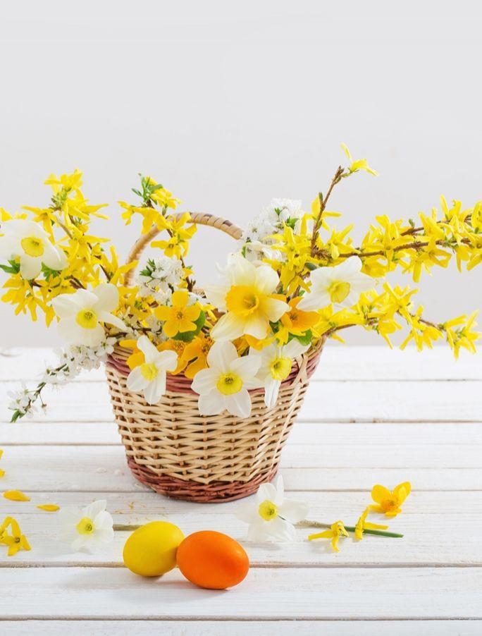 kwiaty na wielkanocny stół