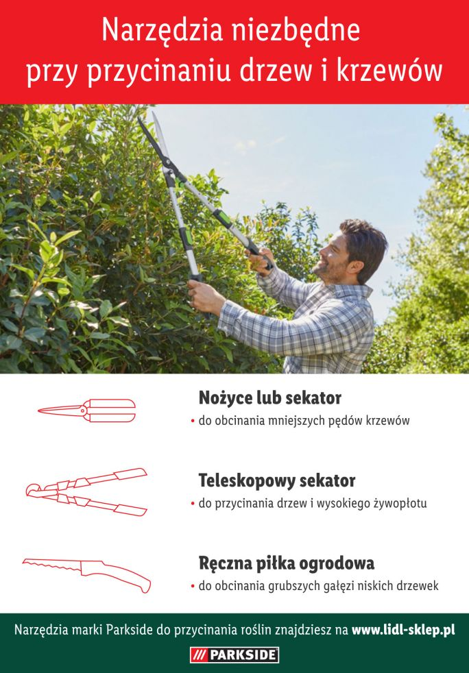 Narzędzia do przycinania drzew i krzewów - infografika