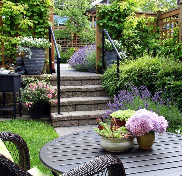 jak pozbyć się kleszczy w ogrodzie