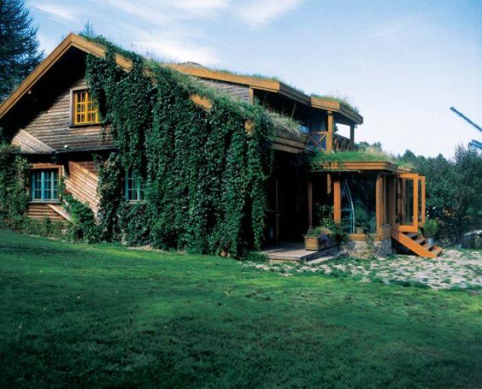Dach pokryty darnią latem wydaje się być fragmentem porastającej zbocze łąki.