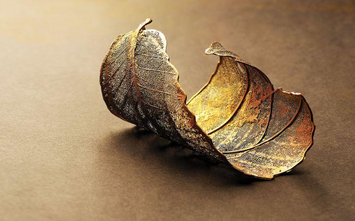 Ewa Rudowska wyczyszczone fragmenty liści pokrywa miedzią, galwanizuje srebrem albo złotem, a potem układa w