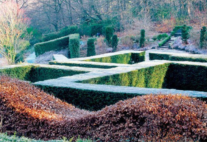 Ogród wyrzeźbiony w bukszpanach i ligustrach.