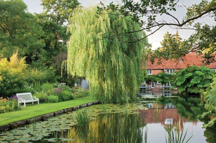 angielski ogród staw