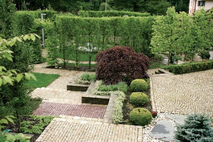 W dolnej części ogrodu kolisty salon otoczono wysokimi strzyżonymi grabami.