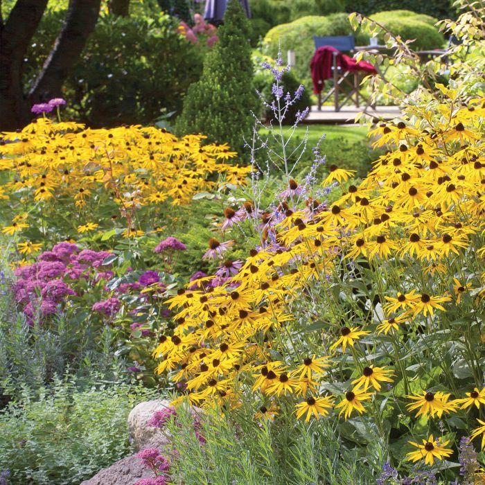 kwiatowe rabaty i ozdobne trawy w ogrodzie