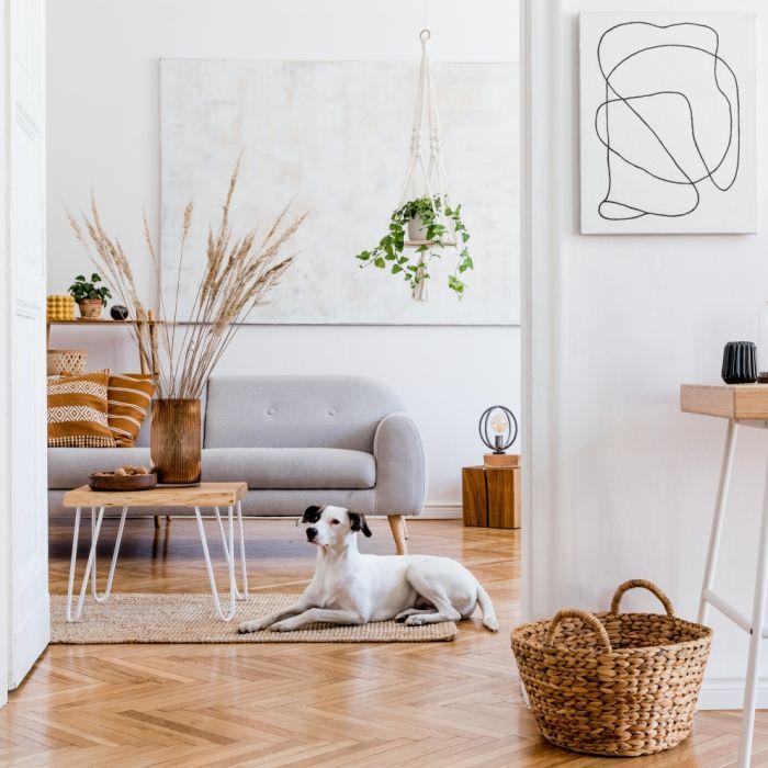 alternatywny dla drewnianej podłogi