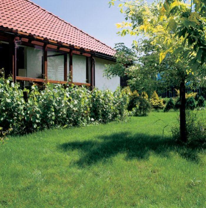 Przez przeszkloną ścianę widać szpaler czerwonych porzeczek, nad nim rozpościera się wspaniały widok na ogród.