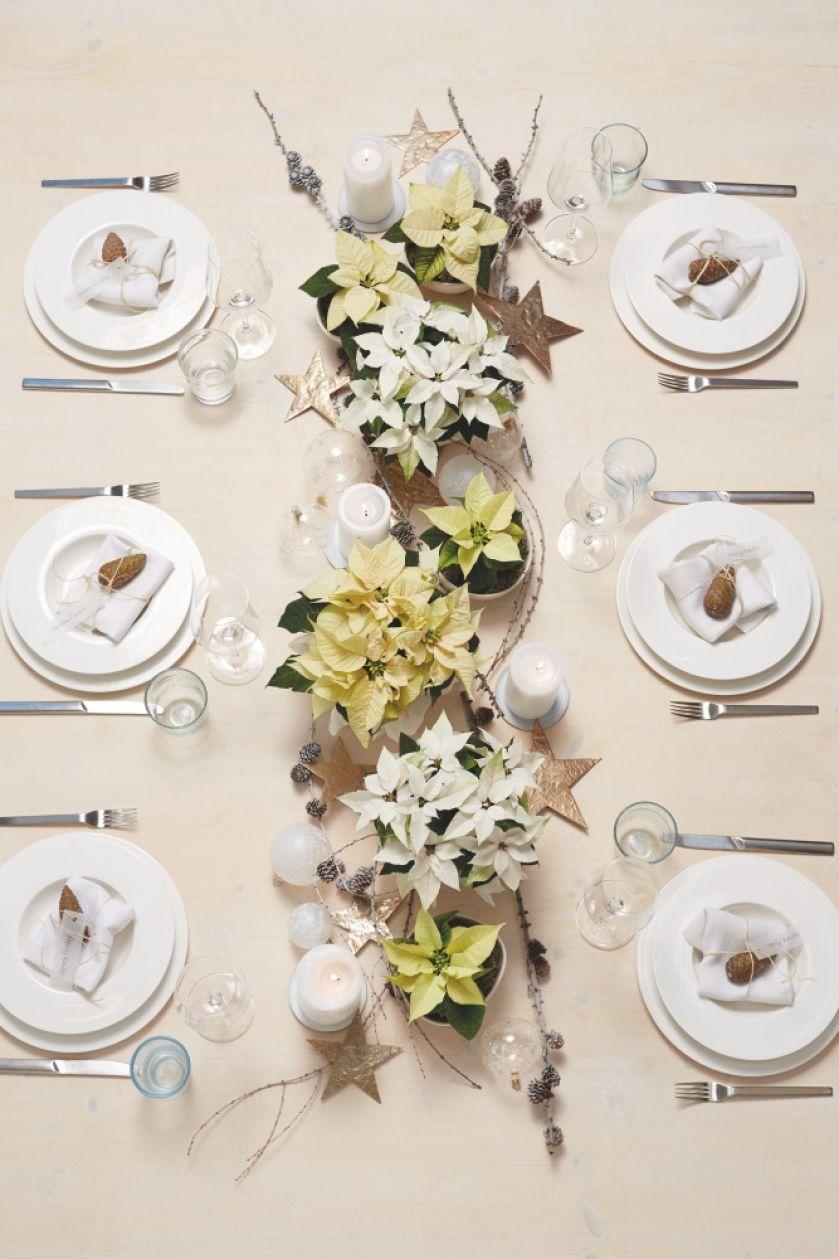 dekoracja stołu z gwiazdami betlejemskimi