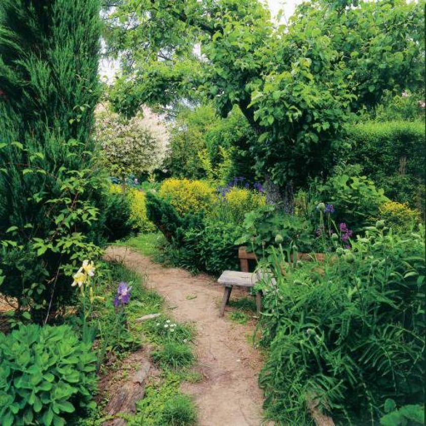 Drewniana ławeczka obok ścieżki. Nad kryształowym stawem - stary ogród przywrócony do życia