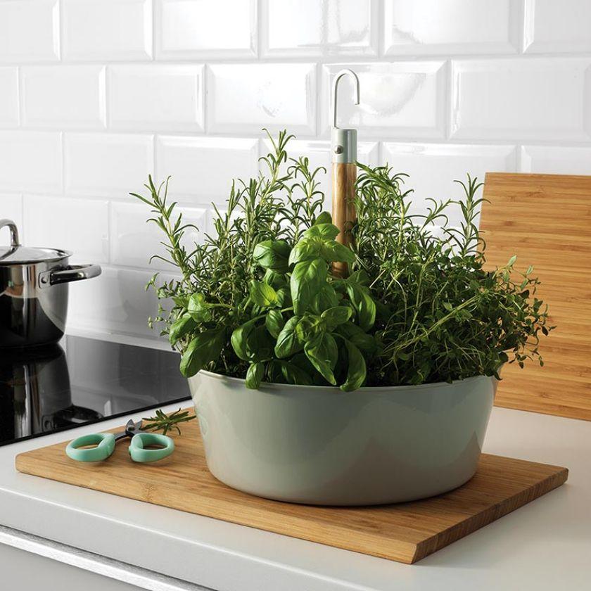 doniczki na zioła w kuchni