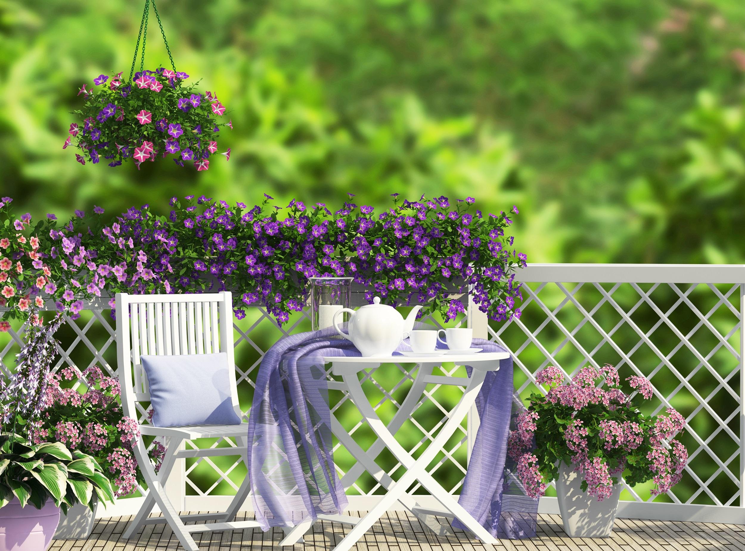 Kwiaty Na Balkon Jakie Wybrać Werandapl